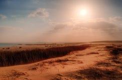 Al Rayan Wadi Στοκ εικόνα με δικαίωμα ελεύθερης χρήσης