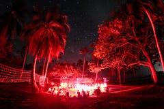 Al rood in Isla Fuerte Stock Foto's