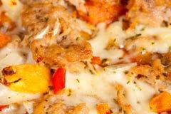 Al Tonno de la pizza Imagenes de archivo