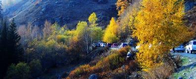 Al zhaofuxintai in autumn,happy tourism. stock photos
