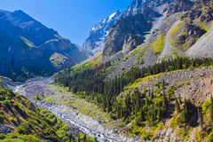 Ala-Archa gorge, Kyrgyzstan. Stock Images