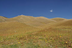Ala Archa in Kyrgyzstan. Grassy hills in Ala Archa national park in Tian Shan mountain range in Kyrgyzstan stock images