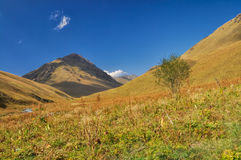 Ala Archa in Kyrgyzstan. Picturesque green hills in Ala Archa national park in Tian Shan mountain range in Kyrgyzstan stock photos