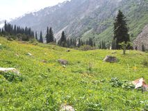 The Ala Archa National Park in the Tian Shan mountains of Bishkek Kyrgyzstan stock image