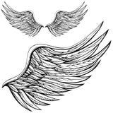 Ala del ángel de la historieta Imagenes de archivo