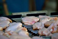 Ala di pollo Immagini Stock