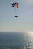 Ala flexible solitaria sobre Chipre del sur Foto de archivo