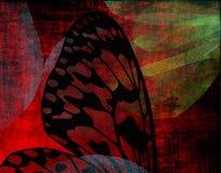 Ala gotica della farfalla Fotografia Stock