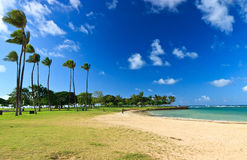 Ala Moana Park, Oahu Hawaii Royalty Free Stock Image