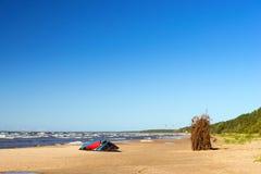 Ala per l'aquilone che pratica il surfing sulla riva Immagini Stock Libere da Diritti