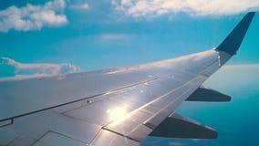 Ala piana durante il volo archivi video