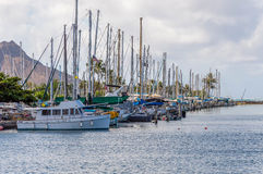 Ala Wai Boat Harbor. Ala Wai Harbor is the largest small-boat and yacht harbor in Hawaii. Located  just outside of Waikiki Stock Photography