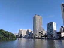 Ala Wai Canal, canoas, hoteles, árboles de las propiedades horizontales, del campo de golf y de coco fotos de archivo libres de regalías