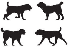 Alabai, Central Asian Shepherd Dog Breed Silhouettes Stock Photo