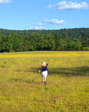 Alabama Field of Yellow Stock Image