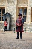 Alabardero y guardia de Coldstream en la torre de Londres Imagenes de archivo