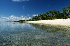 The alabaster beach in south pacific island Stock Images