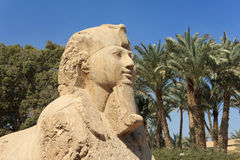 alabaster- memphis sphinx Royaltyfri Bild
