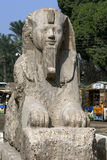 The alabaster sphinx of Amun-Ofis 2nd at Memphis, Egypt. The statue is 4.5 metres high and 8 metres long and once flanked the enterance of the Temple of Ptah Stock Photography