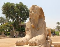 Alabaster Sphinx of Memphis. Royalty Free Stock Photo