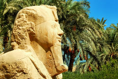 Alabaster sphinx of Memphis, Egypt Royalty Free Stock Images
