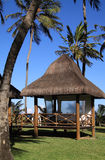 Alagoas Royalty Free Stock Image