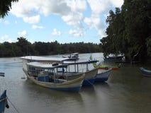 Alagoas/Brasilien - Apr 14 19 - tropischer Fluss und Boote stock video