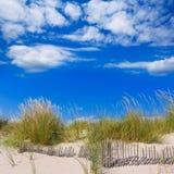 Alaior Cala Son Bou in Menorca dunes at Balearic Royalty Free Stock Image