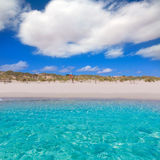 Alaior Cala Son Bou in Menorca turquoise beach at Balearic Stock Images