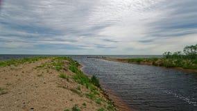 Alajogi rzeka płynie w Jeziornego Peipsi Zdjęcie Stock