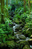 Alakahi Stream. Splashes and gurgles down a boulder crowded stream bed in the Hawaii Tropical Botanical Garden on the Big Island of Hawaii Stock Images