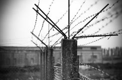 Alambre de púas Imagen de archivo