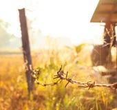Alambre de púas alrededor del cortijo con salida del sol Imagen de archivo
