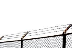 Alambre de púas con el fondo blanco Imagen de archivo