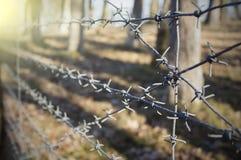 Alambre de púas con el fondo del campo de batalla Foto de archivo libre de regalías