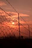 Alambre de púas de la salida del sol. Foto de archivo libre de regalías