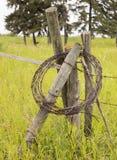 Alambre de púas dejado encima del cercado Imagen de archivo libre de regalías