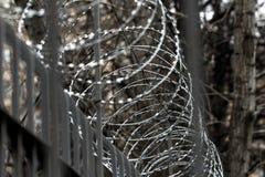 Alambre de púas del metal en la cerca Foto de archivo