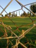Alambre de púas en el campo Imagen de archivo libre de regalías