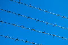 Alambre de púas en fondo del cielo azul Foto de archivo