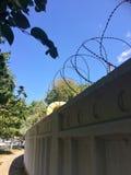 Alambre de púas en la cerca Imagen de archivo libre de regalías