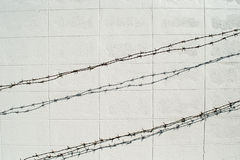 Alambre de púas en la pared blanca del bloque Imagen de archivo