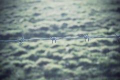 Alambre de púas en un campo Imagen de archivo