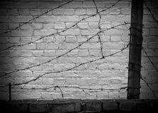 Alambre de púas en una pared de ladrillo oscura Fotografía de archivo libre de regalías