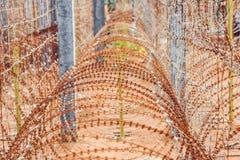 Alambre de púas, una cerca en la prisión Concepto de la prisión Imagen de archivo