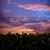 Alambre de púas y puesta del sol Fotografía de archivo libre de regalías