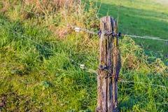 Alambre eléctrico provisional instalado de la cerca y una madera resistida Foto de archivo
