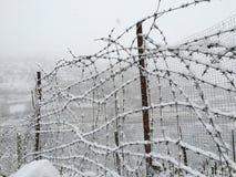 Alambres Nevado Imagen de archivo libre de regalías