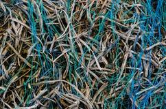 Alambres verdes y azules Fotografía de archivo libre de regalías