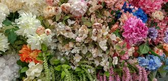 The bunch of pretty spring dried flowers at the store stock photos